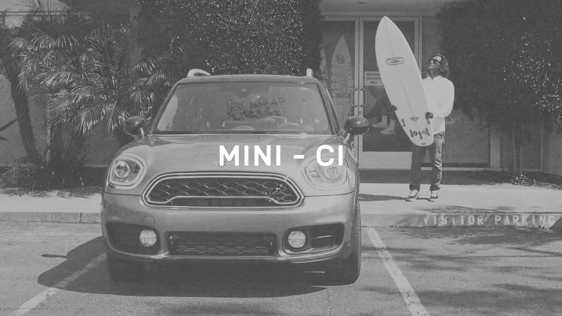 Mini CI